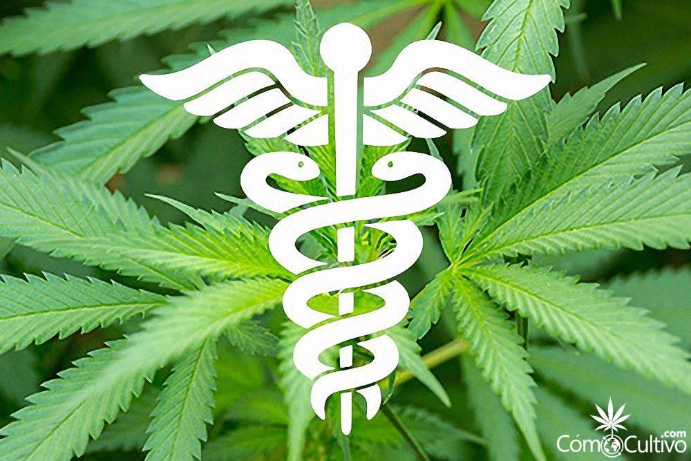 medicina-enfermades-tratar-con-marihuana