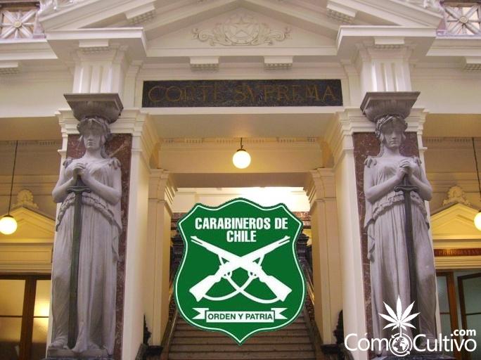 fallo-cultivo-marihuana