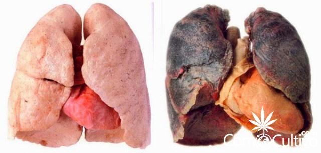 fumar-exceso-marihuana-pulmones