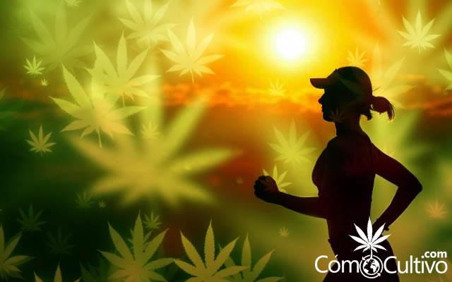 maconha-corpo-corrida-exercicios-endocanabinoides