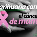 cancer-tratamiento-marihuana