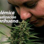 polemica-legalizacion-marihuana