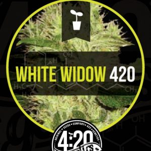 white-widow-auto-420