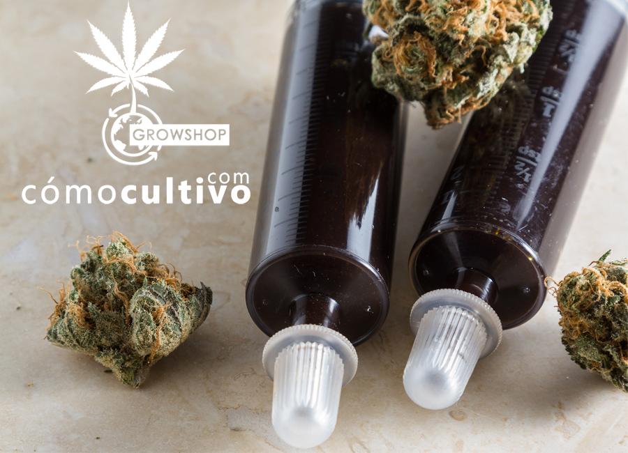dosis-aceite-de-cannabis