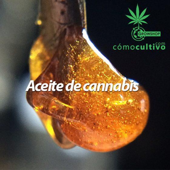 La mejor forma de hacer aceite de cannabis rápido y seguro (Rosin Hash)