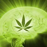 thc-medicinal