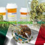 insta-marihuana-medicinal-mexico