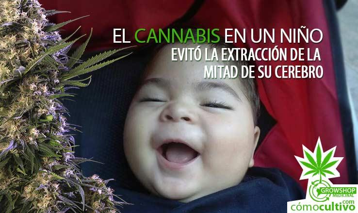 insta-cannabis-en-un-nino-cerebro