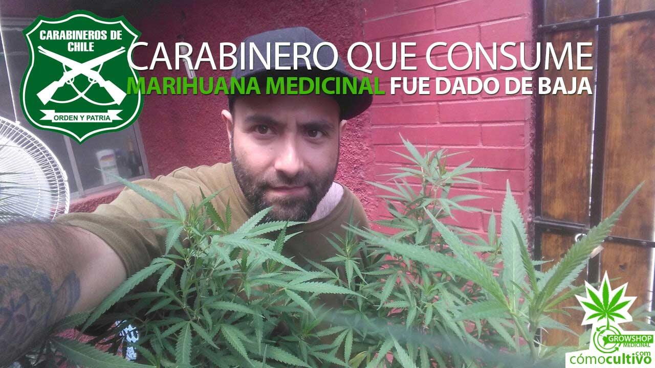 insta-carabinero-consume-marihuana-medicinal-dado-de-baja