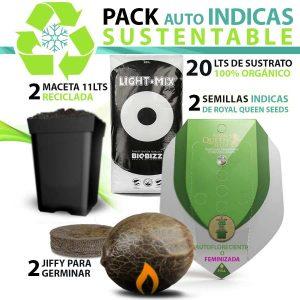 pack-auto-indicas-sustentable