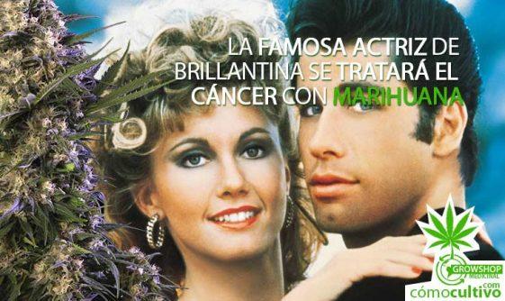 La famosa Actriz de Brillantina (Grease) se tratará el cáncer con Marihuana