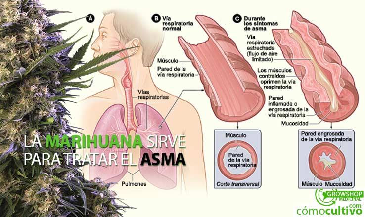 insta-asma-marihuana