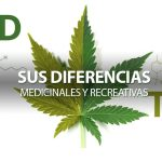 insta-cbd-thc-diferencias-medicinales-recreativas
