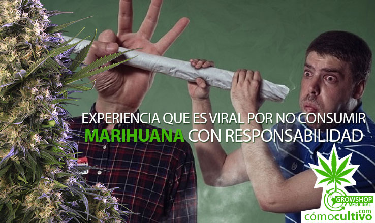 insta-experiencia-marihuana-responsabilidad