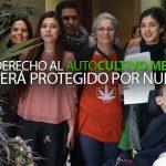 insta-nuevo-proyecto-ley-proteger-derecho-autocultivo-medicinal