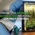 insta-farmaco-cannabis-autocultivo-chile