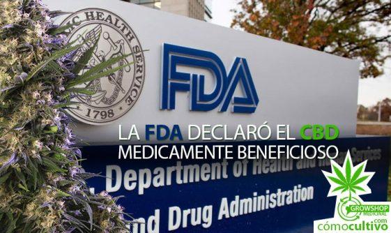 La FDA declaró el CBD medicamente beneficioso