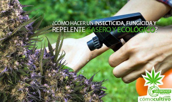 ¿Cómo hacer un Insecticida, Fungicida y Repelente casero y ecológico?