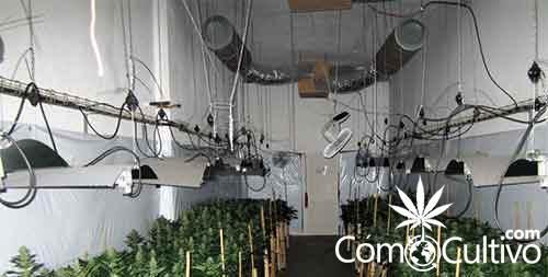 cultivo-indoor  CómoCultivo.com