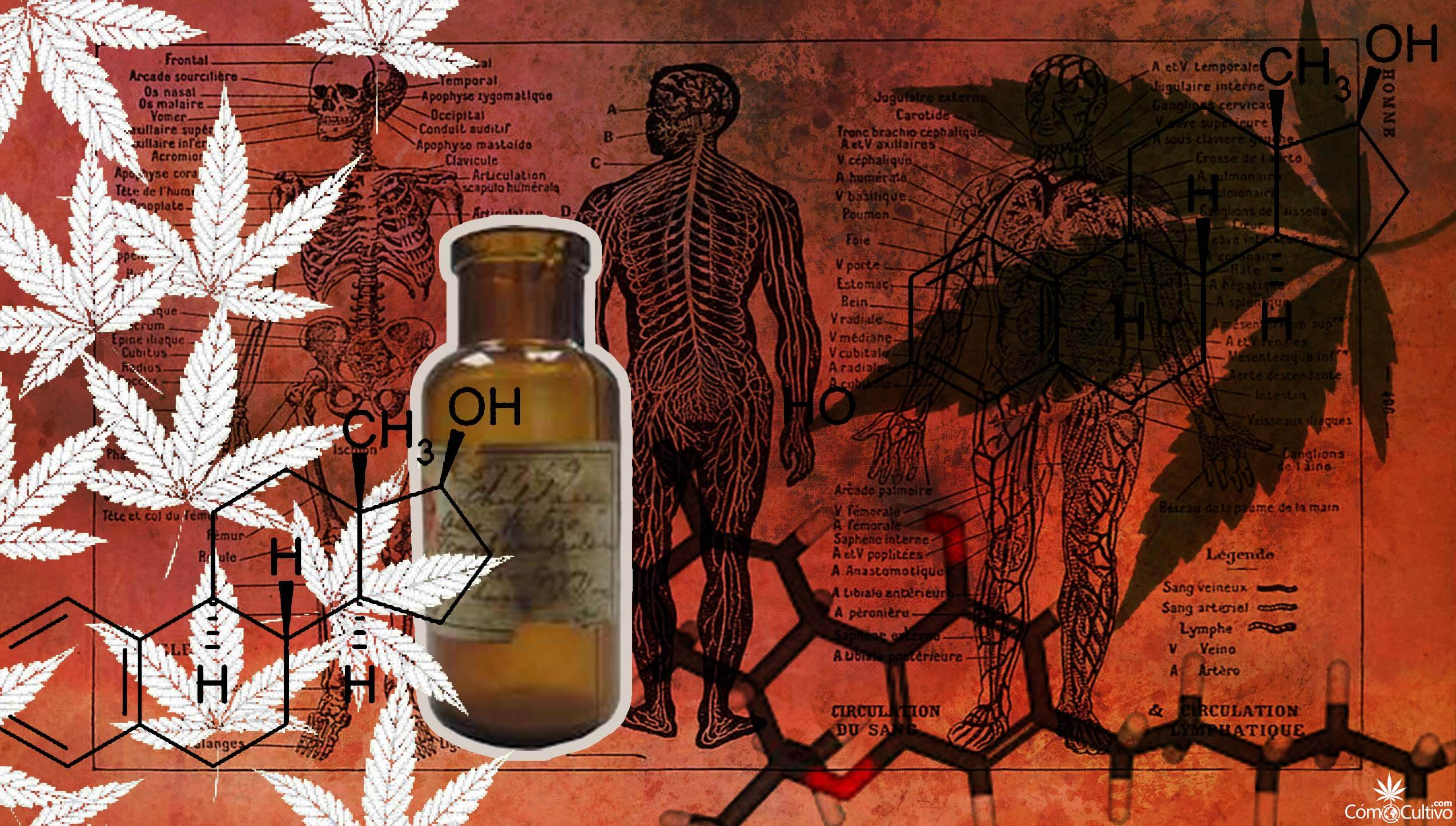 endocanabinoides-reducen-el-dolor