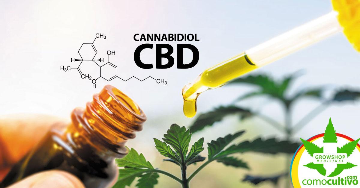 efectos medicinales del cannabidiol