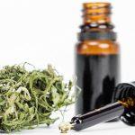 dosis de aceite medicinal de cannabis