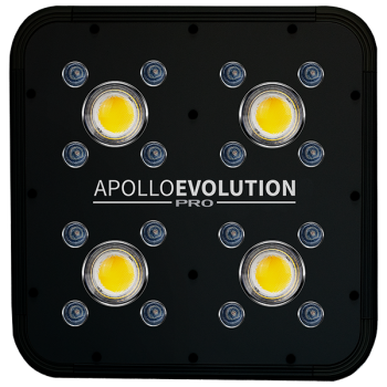 Apollo evolution PRO 4