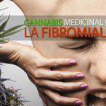 marihuana para la fibromialgia