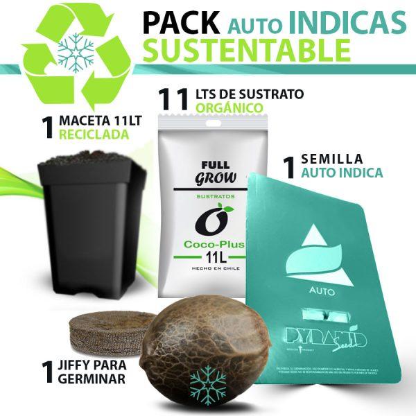 pack-auto-indica-x1