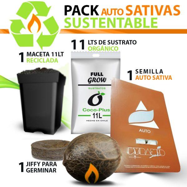 pack-auto-sativas-x1