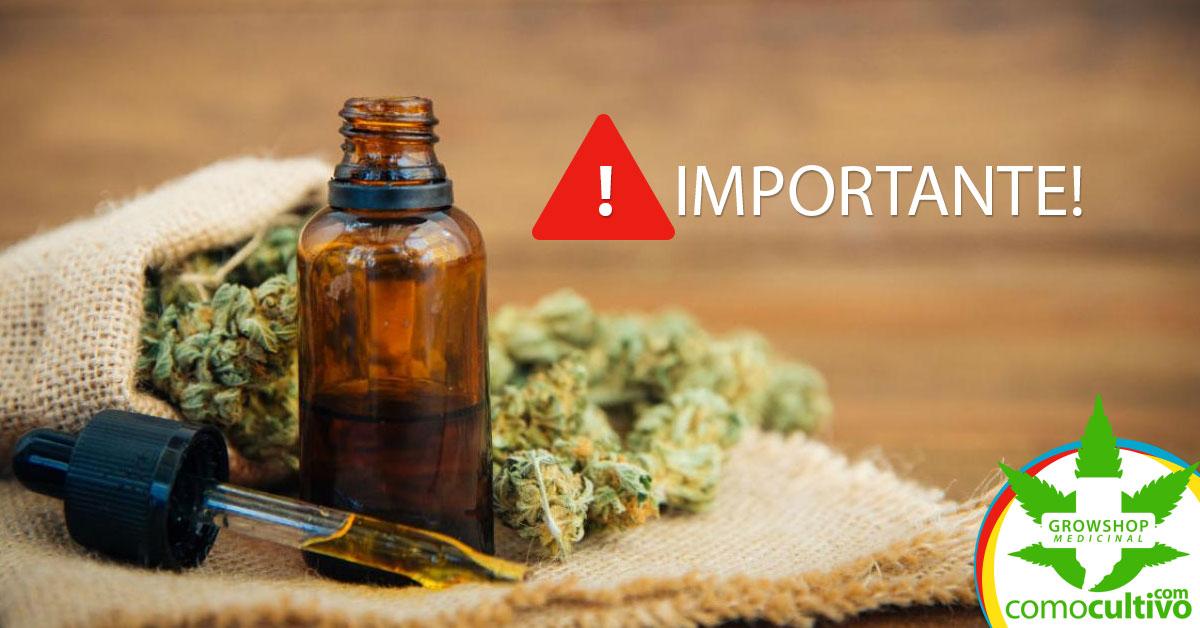 uso de cannabis medicinal
