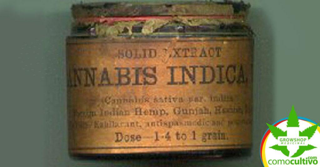 cannabis contra la epilepsia