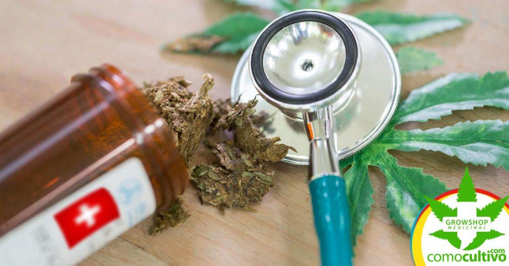 acceso al Cannabis