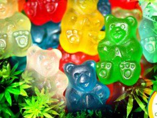 gomitas de cannabis