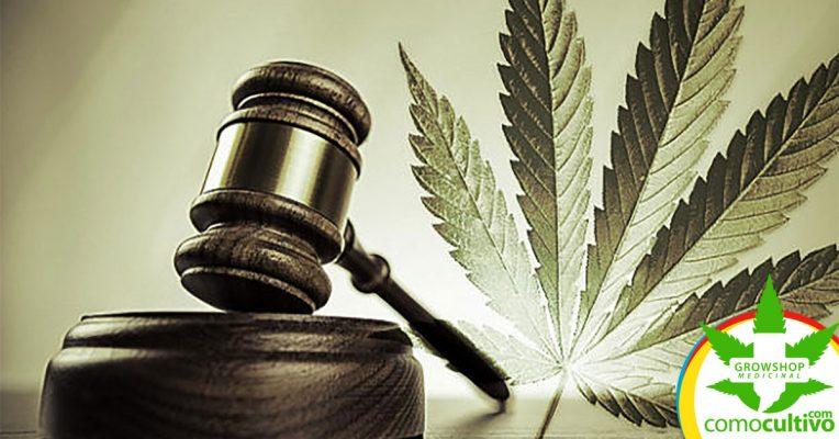 Consumo recreativo de Cannabis