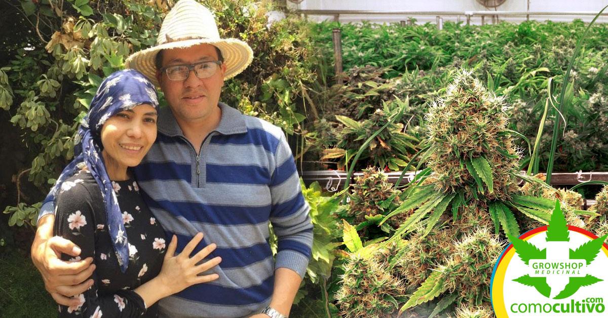 vida gracias al cannabis
