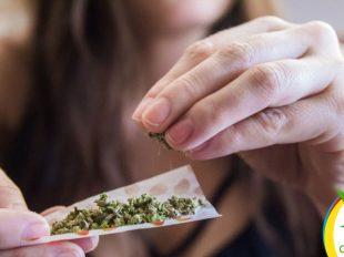 Mejores madres con Marihuana