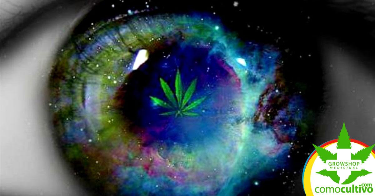 Marihuana mejora la visión