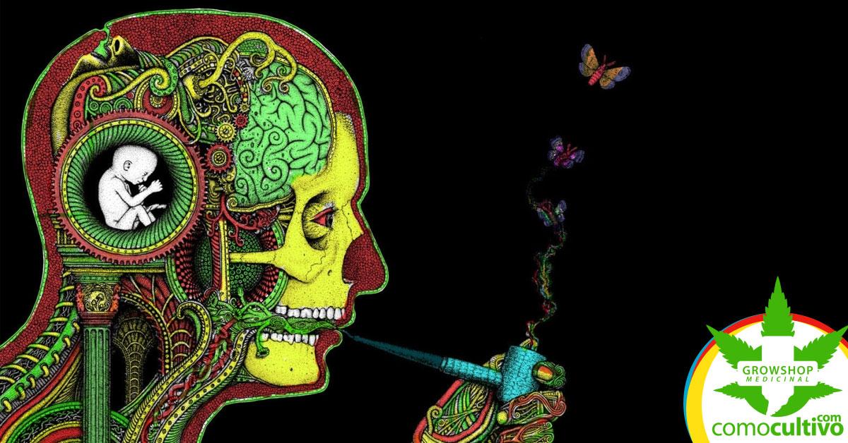 cannabis en la adolescencia