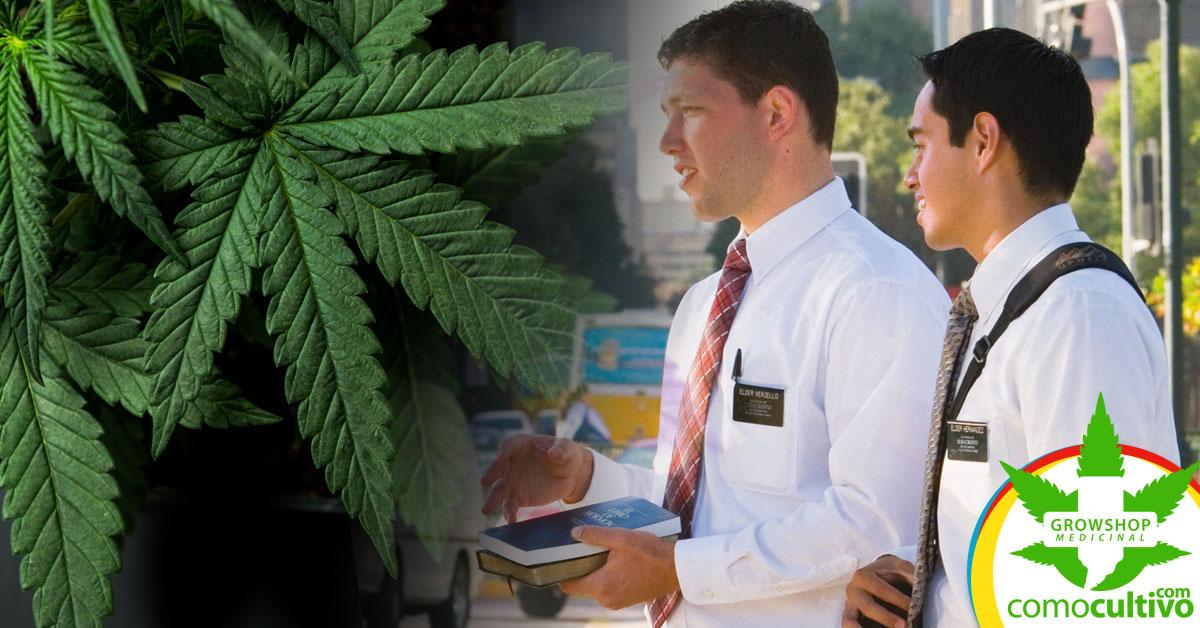 Mormones podrán consumir Cannabis
