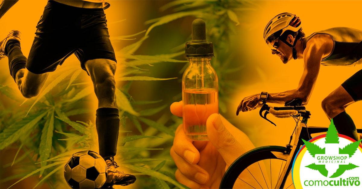 Deportes aprueba el uso del CBD