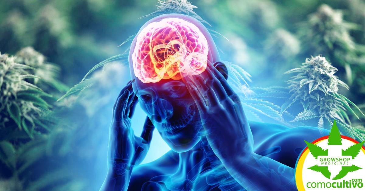 reducir dolores de cabeza y migraña