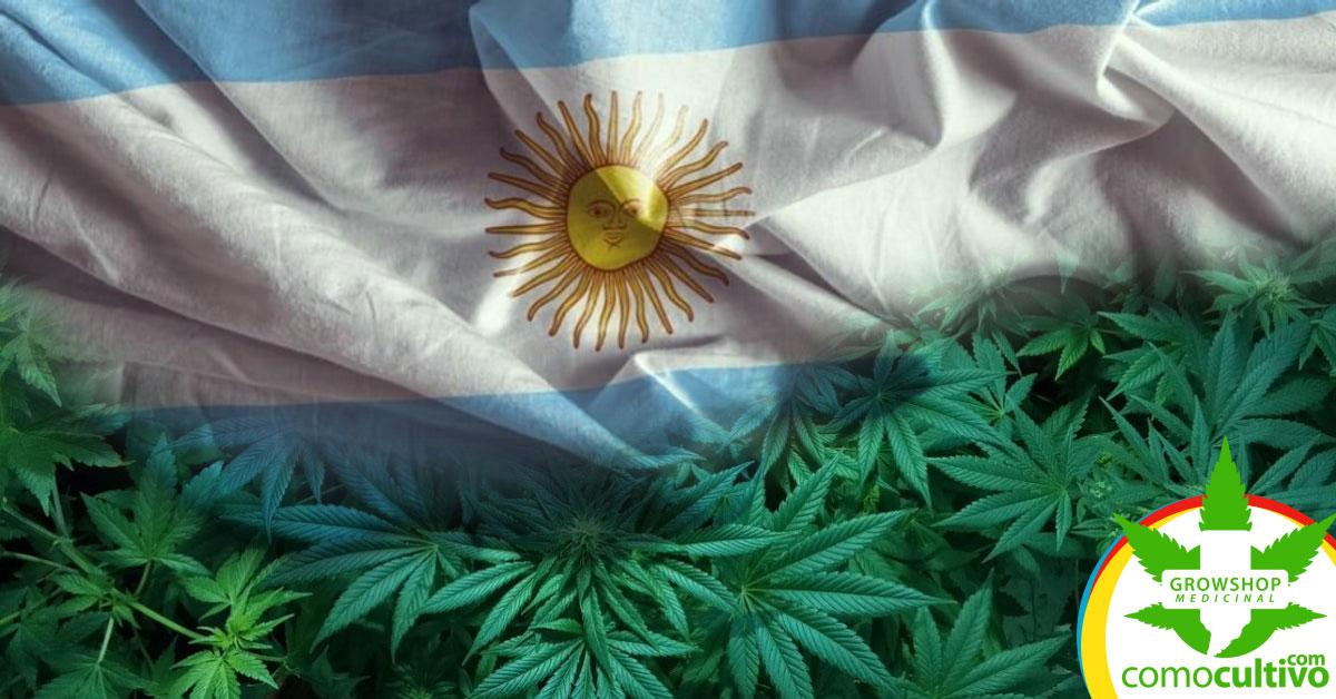 legalizar la tenencia y autocultivo de Cannabis