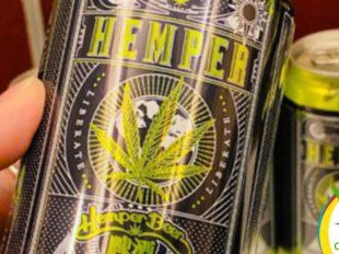 cerveza de cannabis