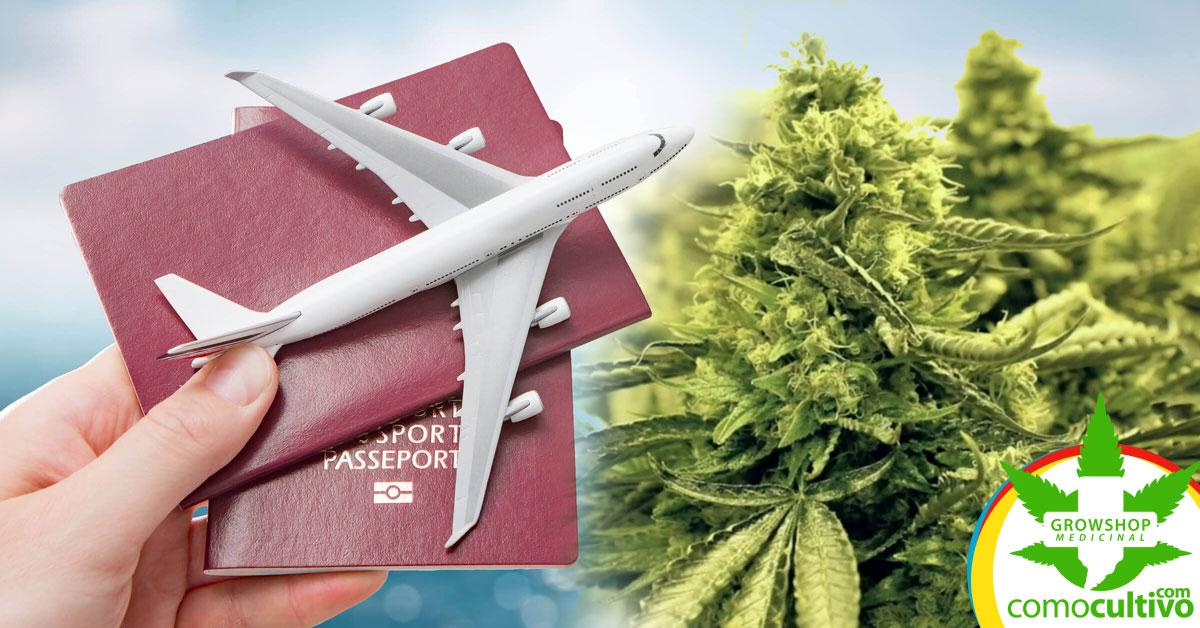 venta de Cannabis