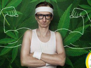 Cannabis aumenta la Testosterona