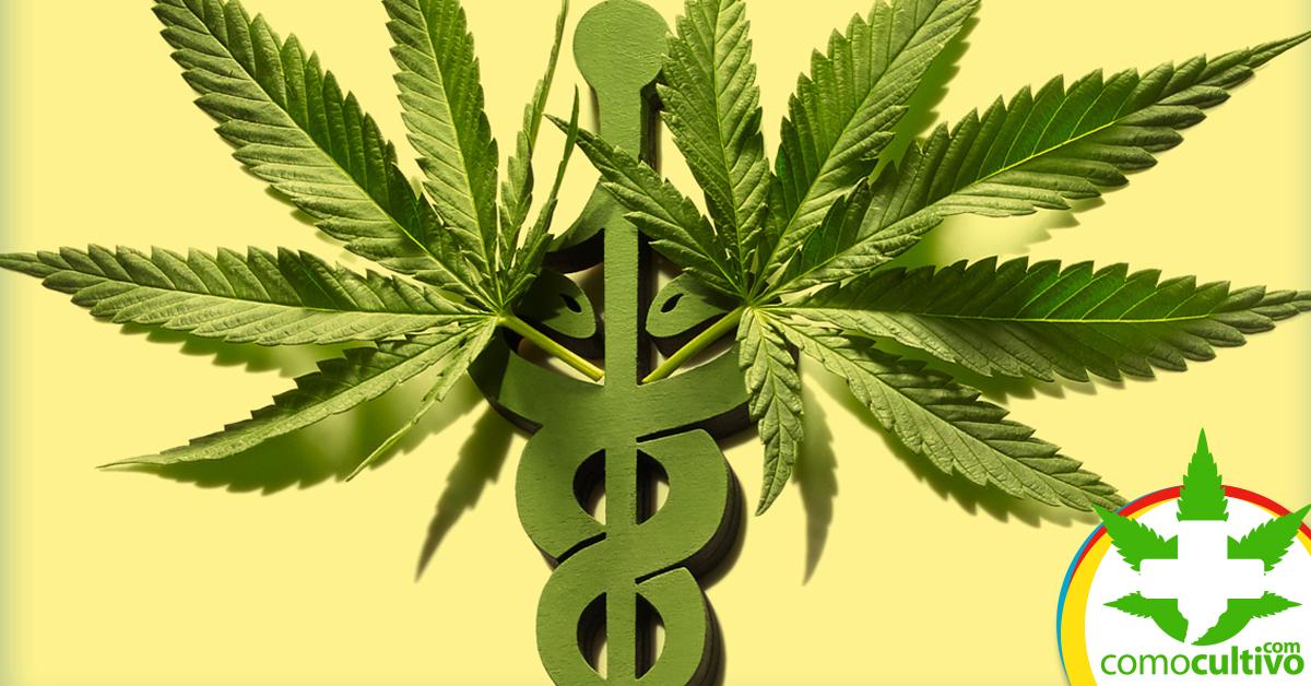Día Mundial de la Marihuana Medicinal