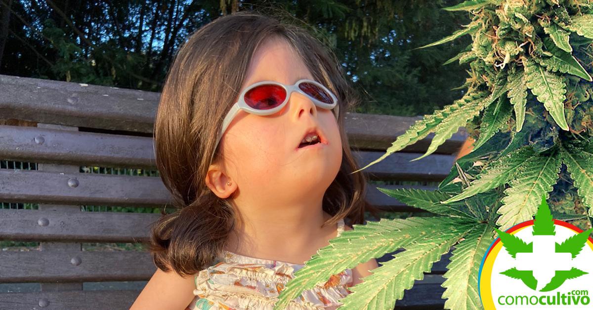tratamiento de Cannabis