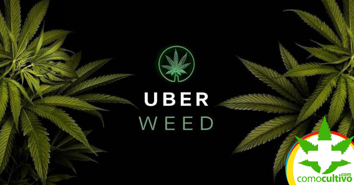 Uber entregará Cannabis
